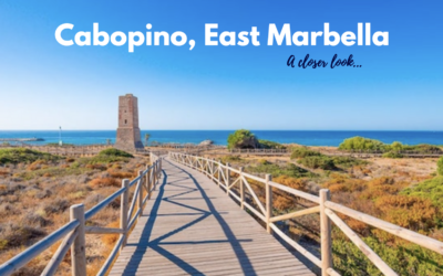 Cabopino Port – A Favourite Among Expats and Holiday Makers